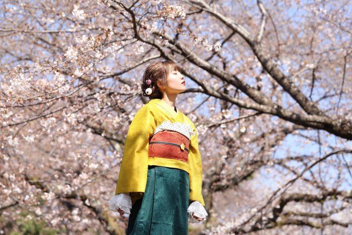 """Singing Cosplayer Hikari released the 10th Anniversary Remix of """"Yume to Hazakura"""""""